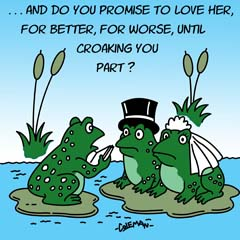 frogs wedding gift design